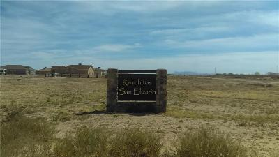 San Elizario Single Family Home For Sale: 13868 Janelle Lynne
