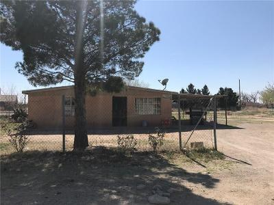 San Elizario Single Family Home For Sale: 744 Brinkman Drive