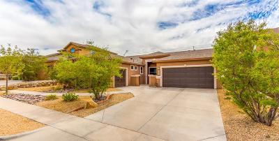 Socorro Single Family Home For Sale: 12186 Rathmore Drive