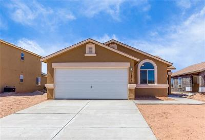 El Paso Single Family Home For Sale: 1164 Cielo Mar Drive