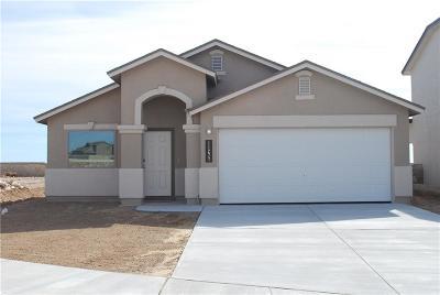 El Paso Single Family Home For Sale: 1153 Cielo Rojo Street