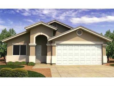 El Paso Single Family Home For Sale: 1176 Cielo Gris Street