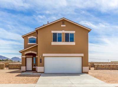 El Paso Single Family Home For Sale: 11245 Cielo Mar Drive