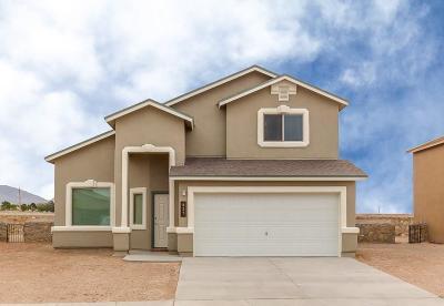 El Paso Single Family Home For Sale: 11257 Cielo Mar Drive