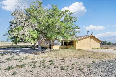 Clint Single Family Home For Sale: 13642 Frey Road