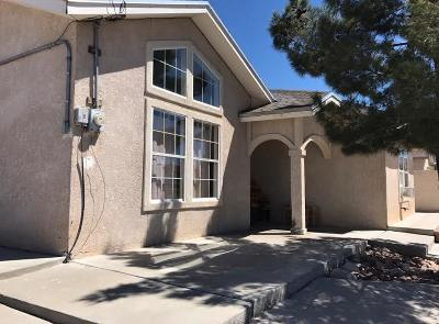 Canutillo Single Family Home For Sale: 1613 Coach Road