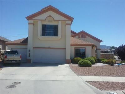 Canutillo Single Family Home For Sale: 7350 Rosas Way