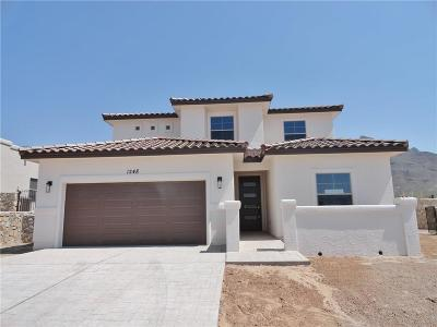 Single Family Home For Sale: 1248 Desert Mirage Place