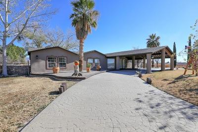 Canutillo Single Family Home For Sale: 7314 Highway 28 Or La Union Road
