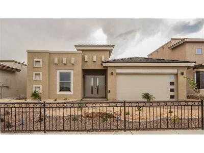 Single Family Home For Sale: 12643 Mark Twain Avenue