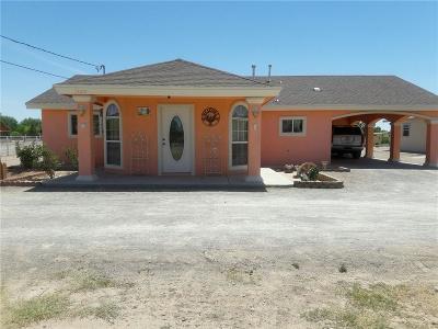 San Elizario Single Family Home For Sale: 13201 Eudora Drive