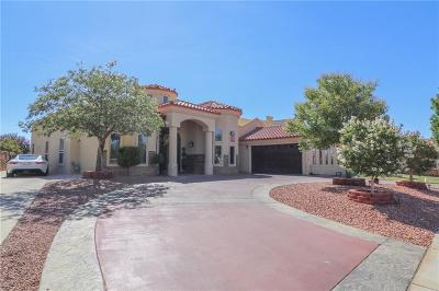 El Paso Single Family Home For Sale: 3640 Tierra Berlin Lane