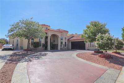 El Paso TX Single Family Home For Sale: $429,000