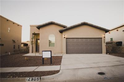 Horizon City Single Family Home For Sale: 12309 Joe Gomez Avenue