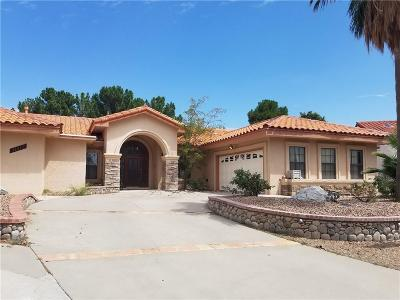 El Paso Single Family Home For Sale: 11917 Paseo Festivo Court