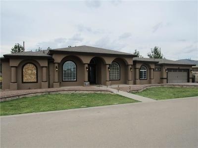 Clint Single Family Home For Sale: 401 Burkett