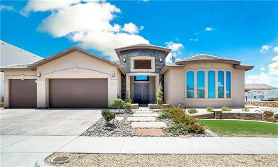 Horizon City Single Family Home For Sale: 875 Silent View Place