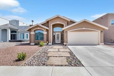 Horizon City Single Family Home For Sale: 12624 Paseo Rae Avenue