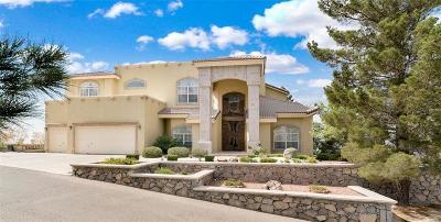 El Paso Single Family Home For Sale: 24 Bronze Crest Lane