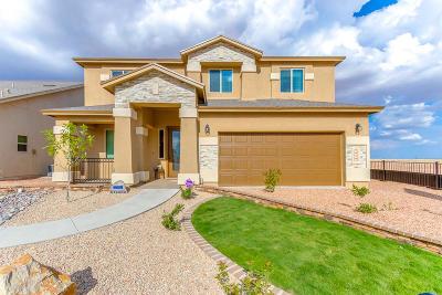 El Paso Single Family Home For Sale: 999 Grandevole Drive