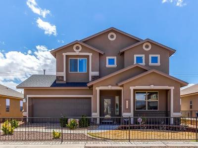 El Paso Single Family Home For Sale: 970 Grandevole Drive