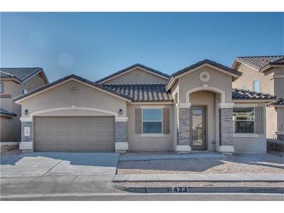 El Paso Single Family Home For Sale: 978 Grandevole Drive