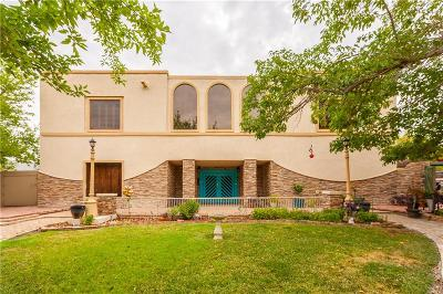 El Paso Single Family Home For Sale: 625 Yandell Drive