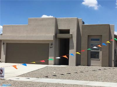 Canutillo Single Family Home For Sale: 341 Isaias