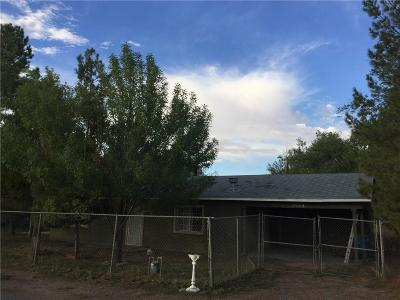 San Elizario Single Family Home For Sale: 11959 Dindinger Road
