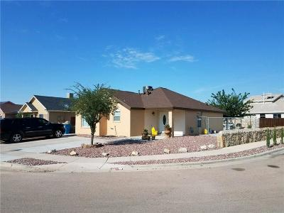 Socorro Single Family Home For Sale: 10743 Spring Valley Circle