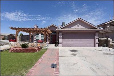 Socorro Single Family Home For Sale: 401 Valle Azul Drive