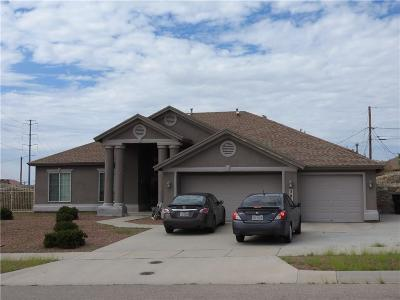 Canutillo Single Family Home For Sale: 501 La Florida Drive