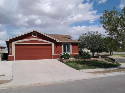 Horizon City Single Family Home For Sale: 300 Peter Noyes Drive