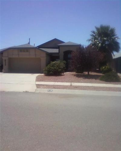 Canutillo Single Family Home For Sale: 716 La Florida Drive
