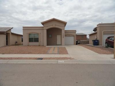 El Paso Single Family Home For Sale: 11628 Mocha Dune Drive