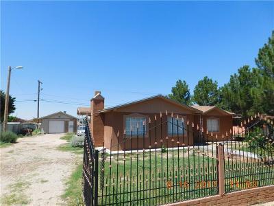 Horizon City Single Family Home For Sale: 821 Berrel Court