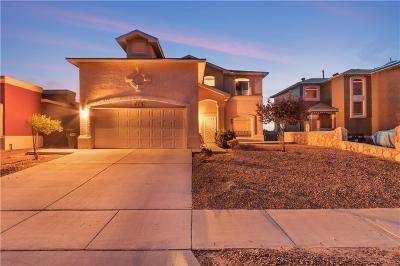 Horizon City Single Family Home For Sale: 313 Peter Noyes Drive