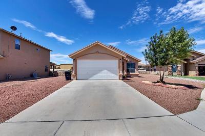 Horizon City Single Family Home For Sale: 813 Desert Moon Drive