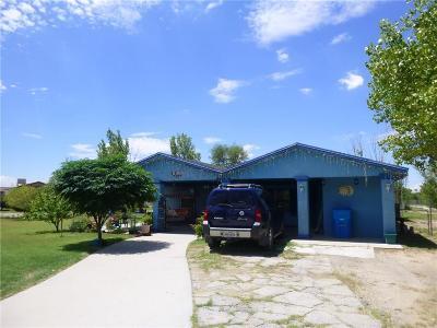San Elizario Single Family Home For Sale: 12941 Perico Drive