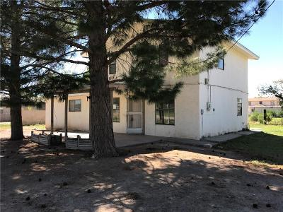 San Elizario Single Family Home For Sale: 620 Don Paco