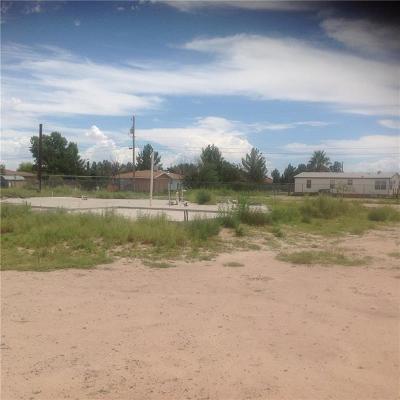 Socorro Single Family Home For Sale: 700 Rosa Azul Drive