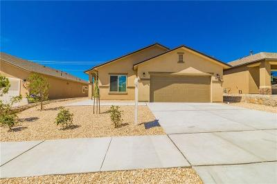 El Paso Single Family Home For Sale: 7537 Red Cedar Drive