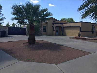 Horizon City Single Family Home For Sale: 409 Pomeroy Place
