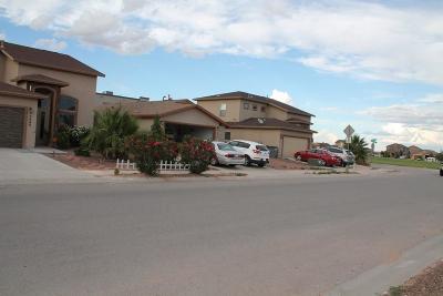 El Paso Single Family Home For Sale: 7045 Copper Town Drive