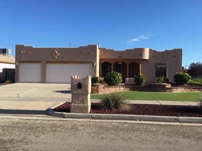 El Paso Single Family Home For Sale: 11357 Patricia Avenue