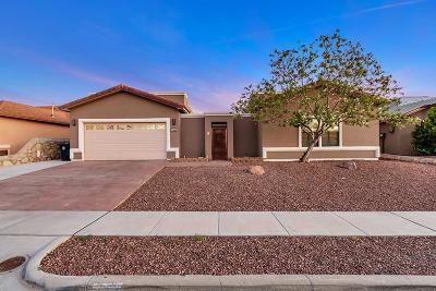 El Paso Single Family Home For Sale: 7324 Black Mesa Drive
