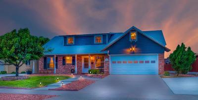 El Paso Single Family Home For Sale: 3015 Cork Drive