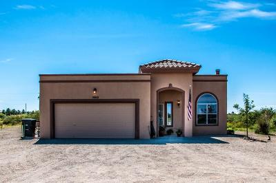 El Paso Single Family Home For Sale: 5060 Indian Wells Drive