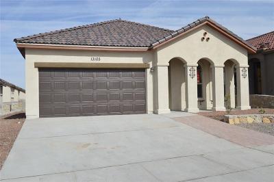 El Paso Single Family Home For Sale: 14320 Seth Payne Drive
