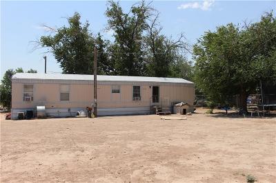 San Elizario Single Family Home For Sale: 1067 Sanchez Road